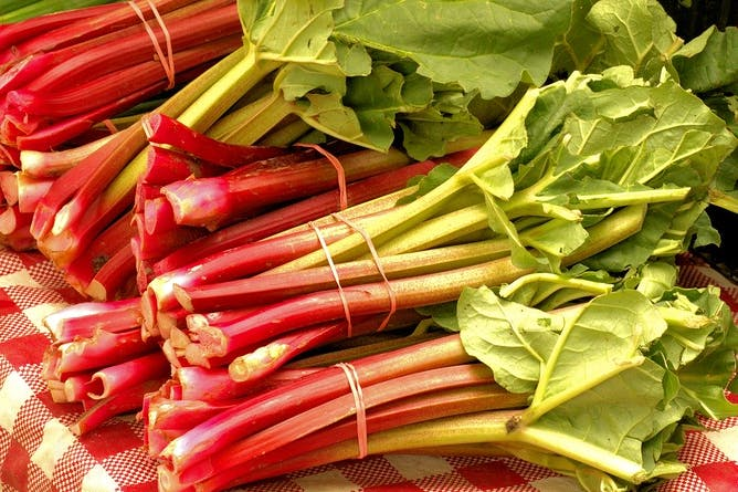 Five Recipes with Rhubarb